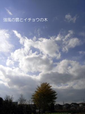 無題11a.JPG
