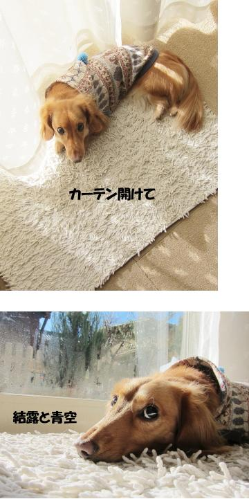 無題12.jpg