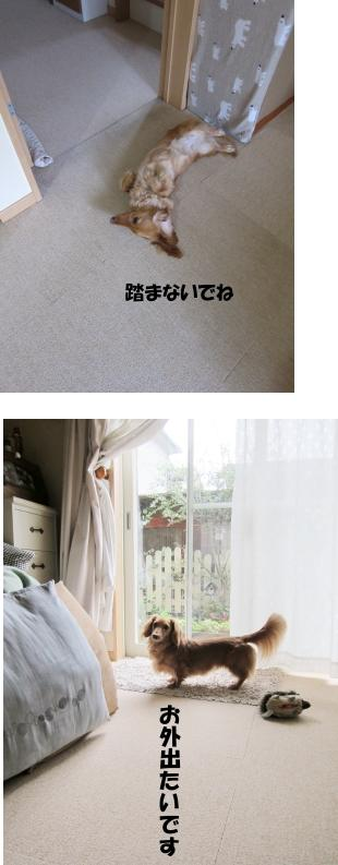 無題13.jpg