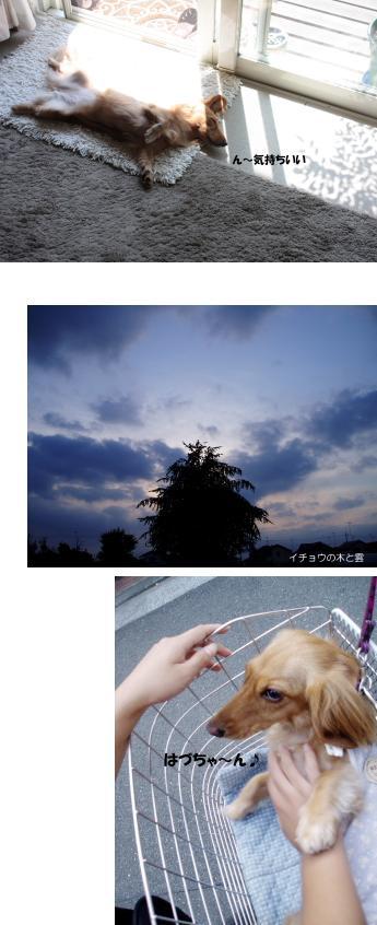 無題13a.jpg