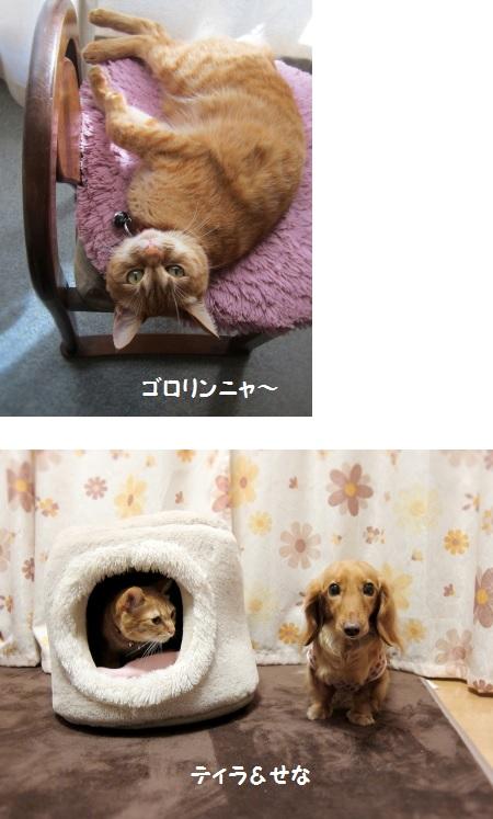 無題15.jpg