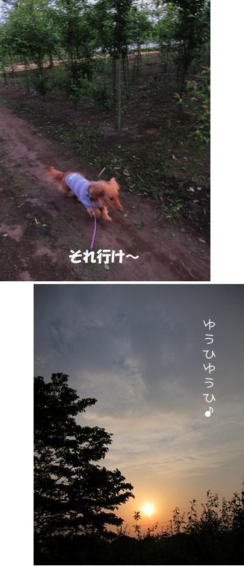 無題15a.jpg