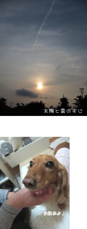 無題17.jpg
