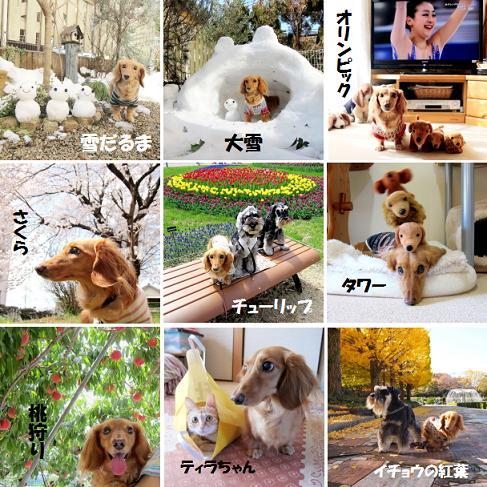 無題2014.jpg
