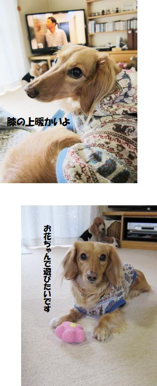 無題21.jpg