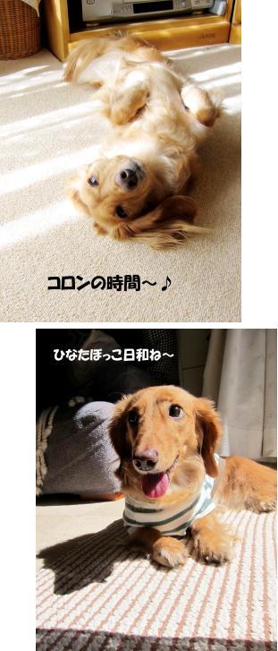 無題21a.jpg