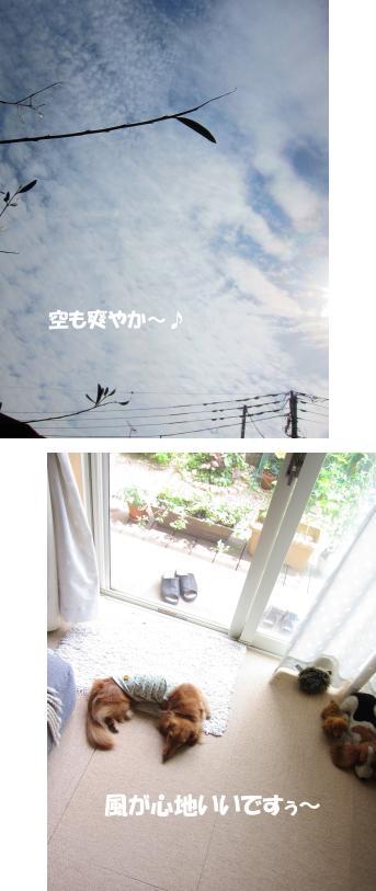 無題22.jpg