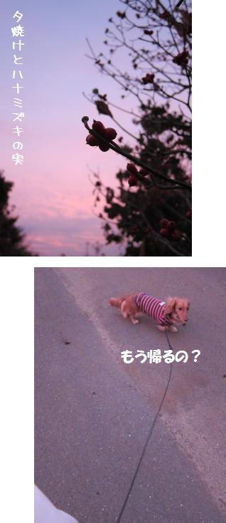 無題23.jpg