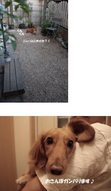 無題23a.jpg