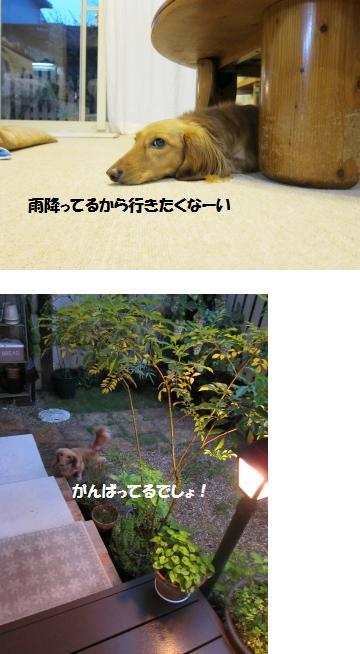 無題24.jpg
