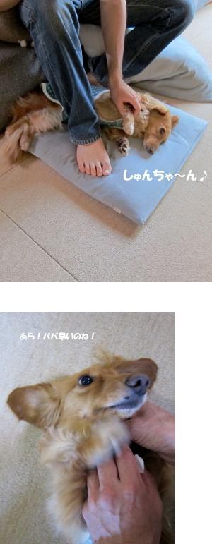 無題25.jpg