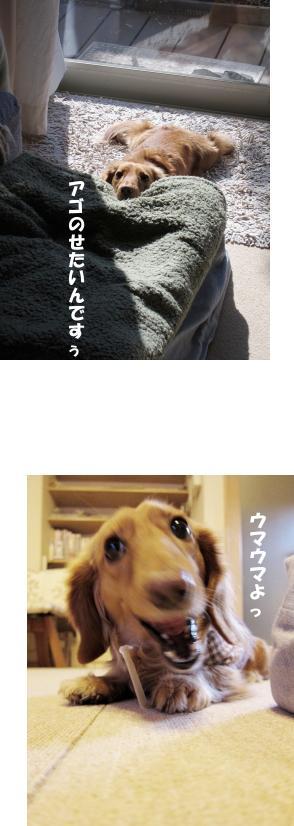 無題27.jpg