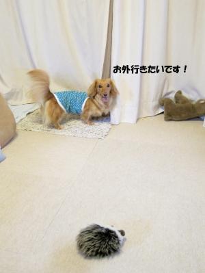 無題29.jpg