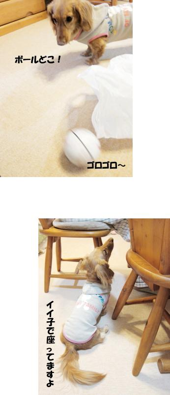 無題3.jpg
