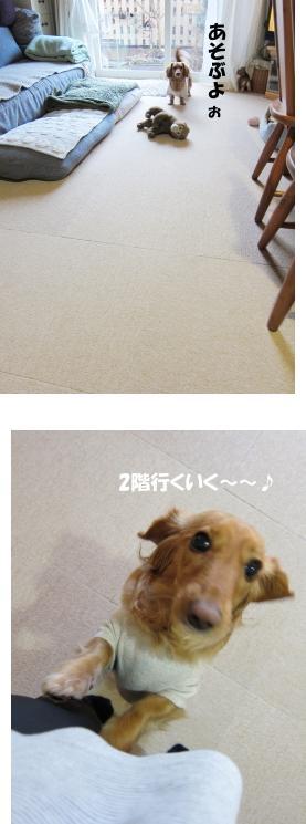 無題6.jpg