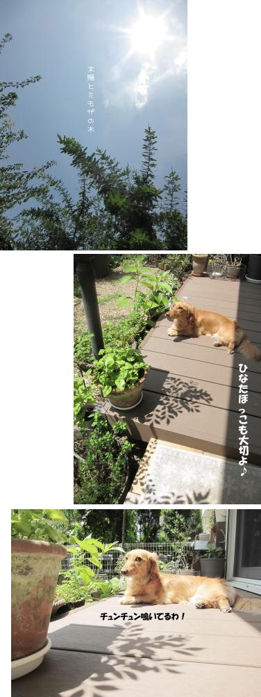 無題8.jpg