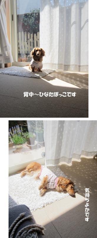 無題9a.jpg