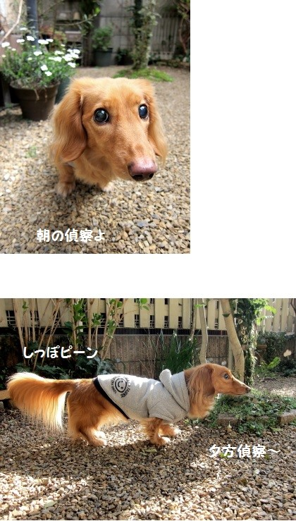 無題2 (2).jpg