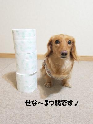 無題a.jpg