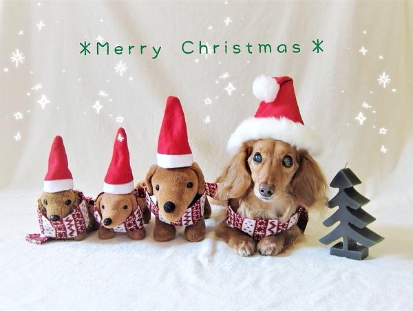 2016クリスマス.JPG