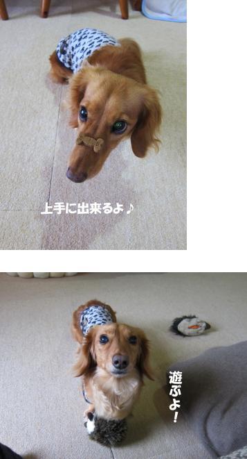 無題10.jpg