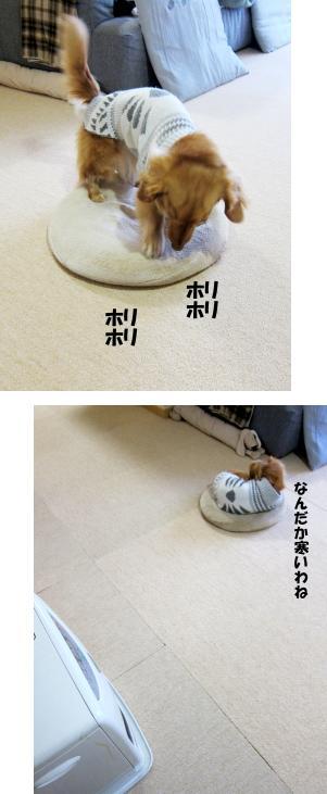 無題11.jpg