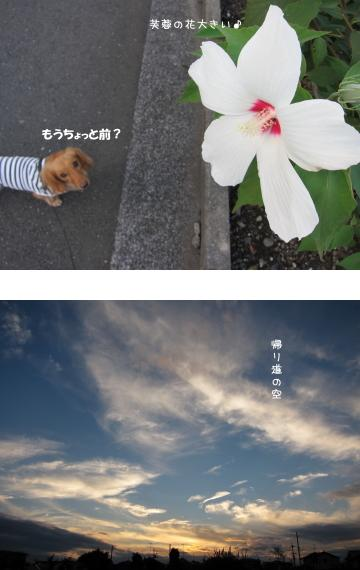 無題14.jpg