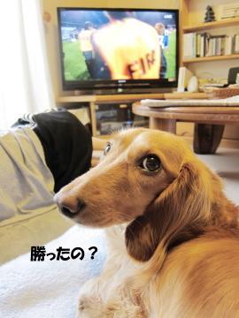 無題14a.jpg