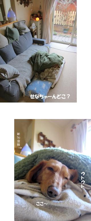 無題16.jpg