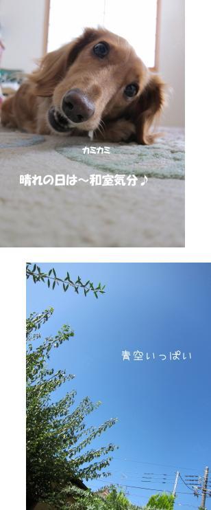無題19.jpg