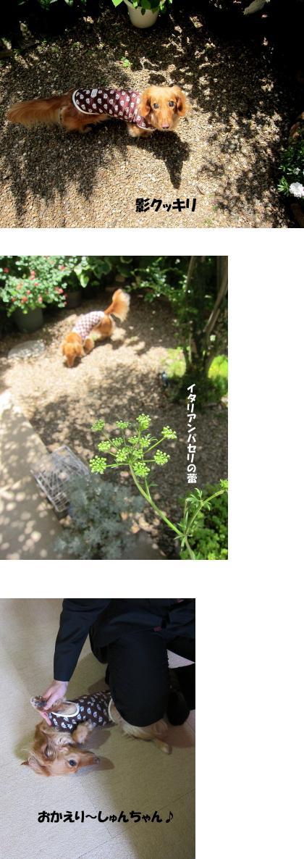 無題6b.jpg