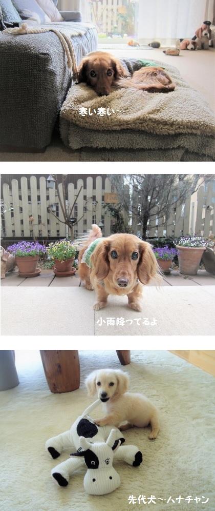 無題7a.jpg